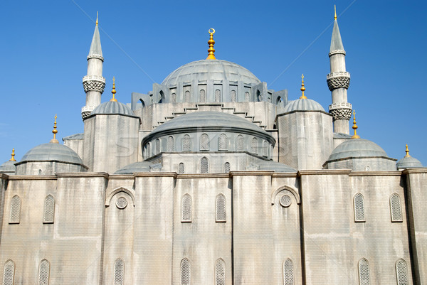 blue mosque of turkey Stock photo © yuliang11