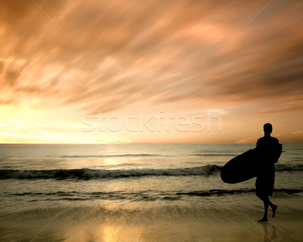 silhouette of surfer Stock photo © yuliang11