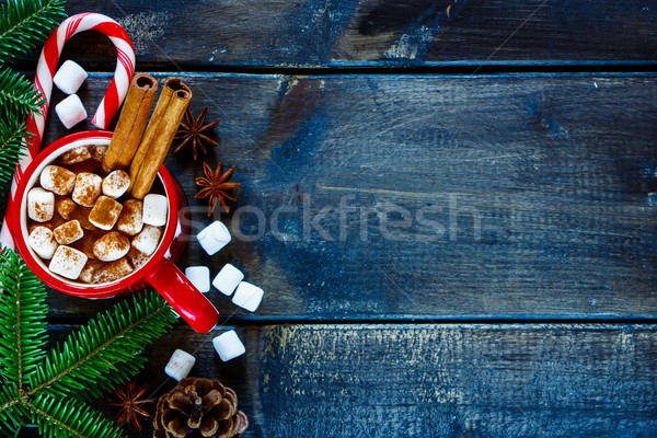 Aromatic cocoa drink Stock photo © YuliyaGontar