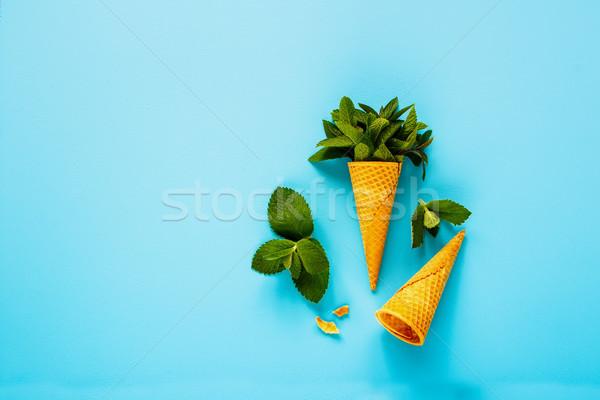 Cone de doce waffle fresco folhas Foto stock © YuliyaGontar