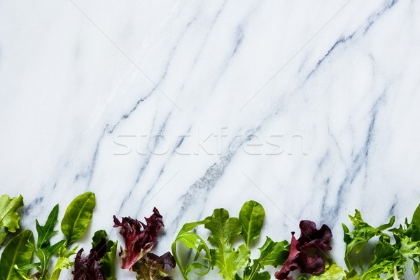 Green herbs salad Stock photo © YuliyaGontar