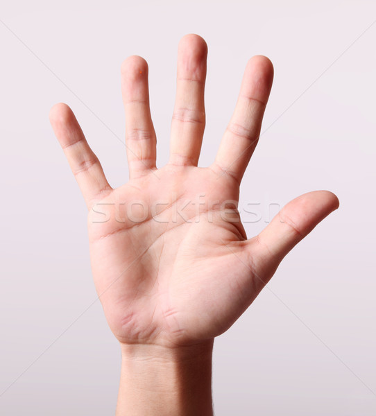 Hand Stock photo © yupiramos