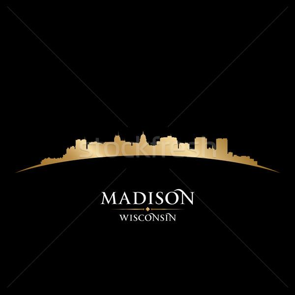 Висконсин город силуэта черный небе Сток-фото © Yurkaimmortal
