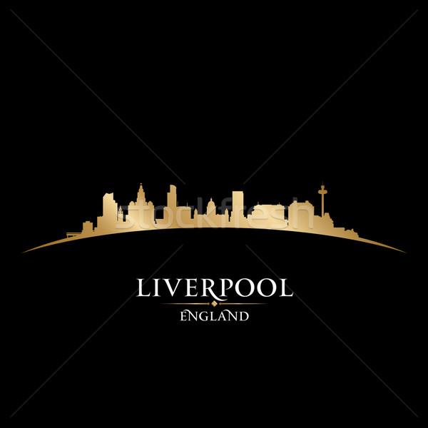 Liverpool inglaterra silhueta preto céu Foto stock © Yurkaimmortal