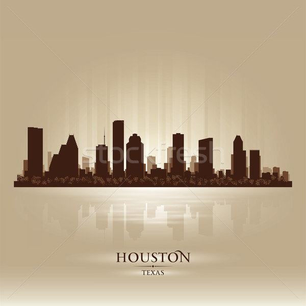 Houston Texas skyline stad silhouet zonsondergang Stockfoto © Yurkaimmortal