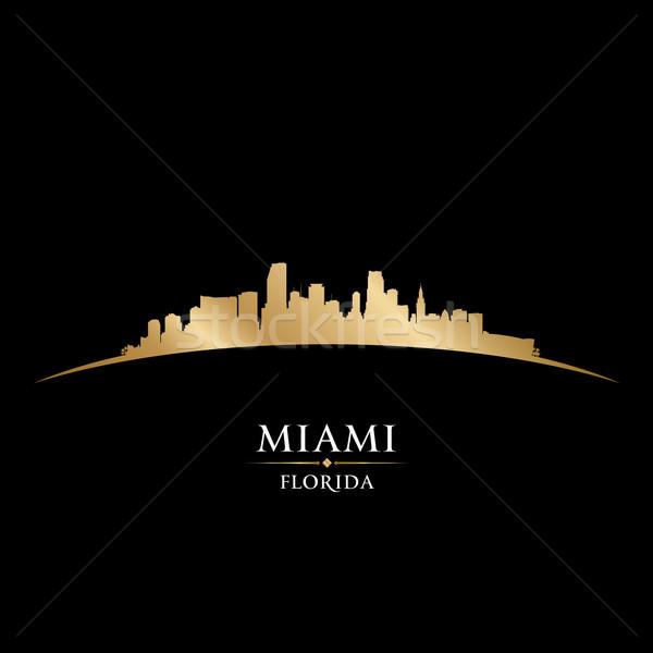 Miami Flórida silhueta preto céu Foto stock © Yurkaimmortal