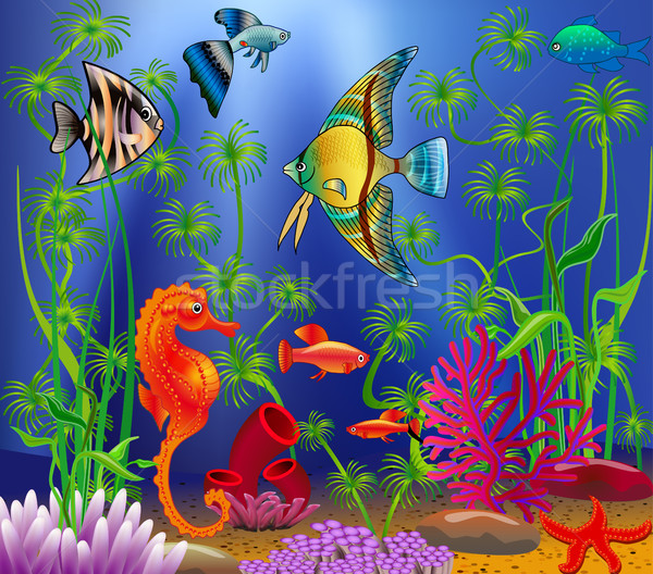 Underwater landscape with various water plants and swimming trop Stock photo © yurkina