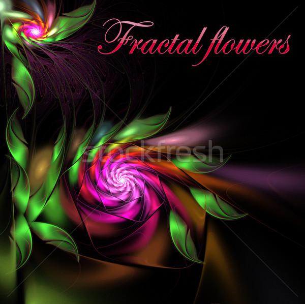Illusztráció fényes szatén virágok copy space fraktál Stock fotó © yurkina