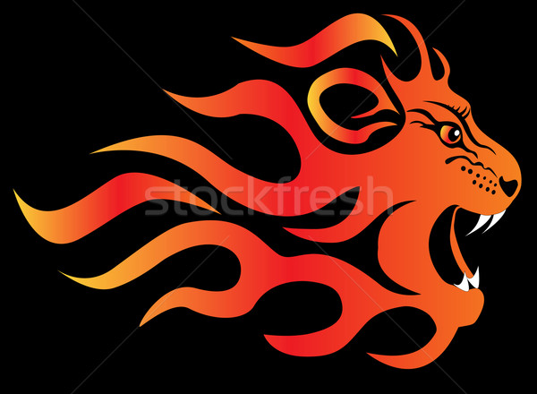 infuriated lion in fire on black Stock photo © yurkina
