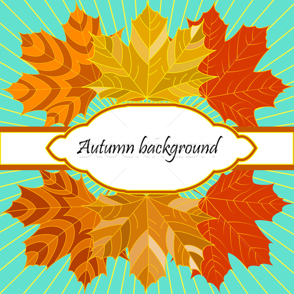 background with autumn leaves and decorative place for text Stock photo © yurkina