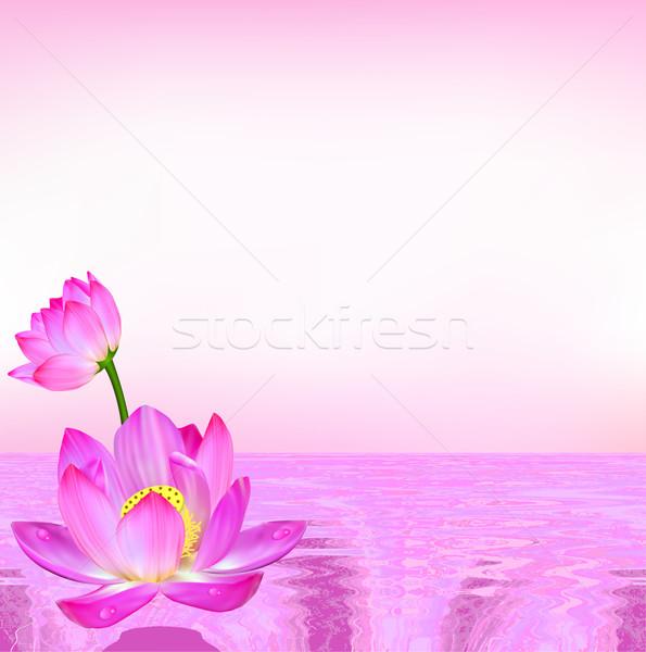Różowy kwiat lilia prąd wody ilustracja kwiaty Zdjęcia stock © yurkina
