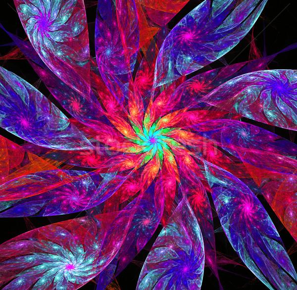 Illusztráció fraktál fényes virág csillagok levelek Stock fotó © yurkina