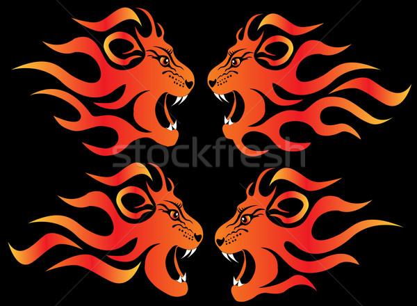set illustration infuriated lion Stock photo © yurkina