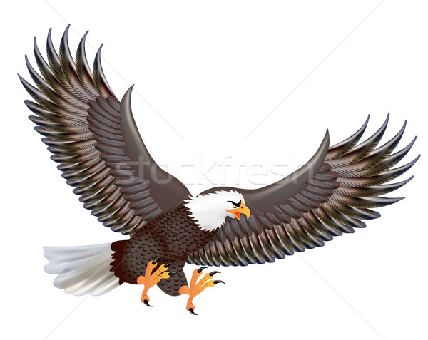 Illustration of the mighty predator eagle in flight isolated on  Stock photo © yurkina