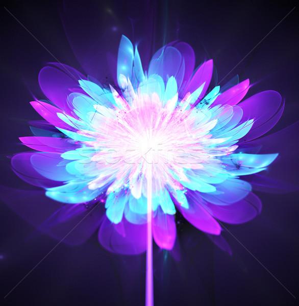 Illustration fractal glowing background bright flower on a stalk Stock photo © yurkina