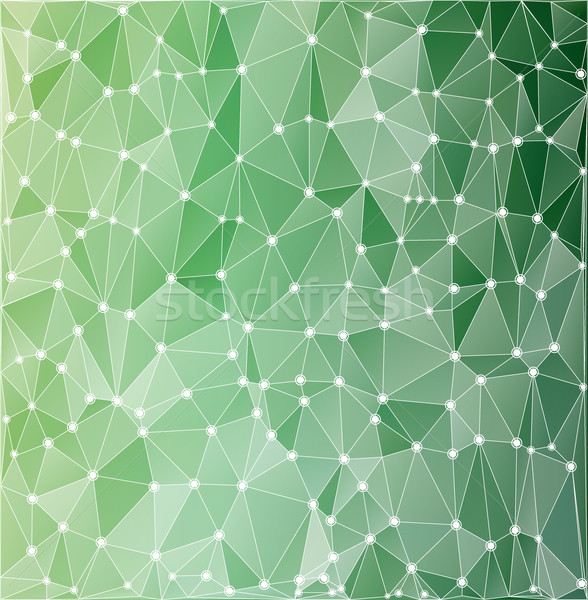 background polygonal green with white contours Stock photo © yurkina