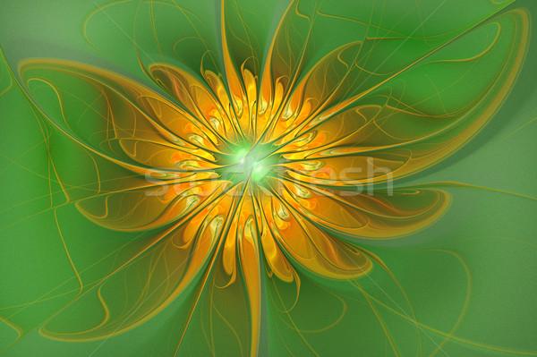 Illustratie fractal bloem groene abstract Stockfoto © yurkina