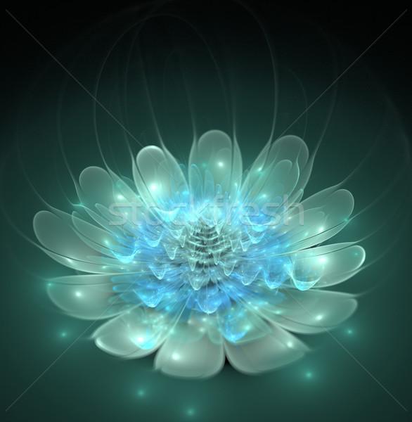 Illustration fractal fantastique lumineuses fleur bleue résumé Photo stock © yurkina