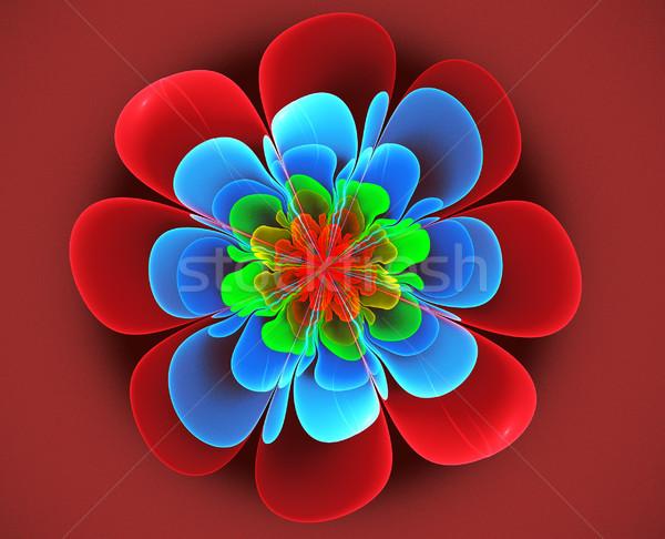 Frattale illustrazione luminoso fiore rosso computer Foto d'archivio © yurkina
