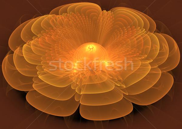 иллюстрация фрактальный цветок нежный воды Лилия Сток-фото © yurkina