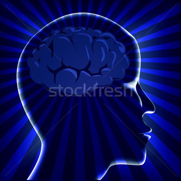 иллюстрация мозг человека повернуть синий медицинской Сток-фото © yurkina