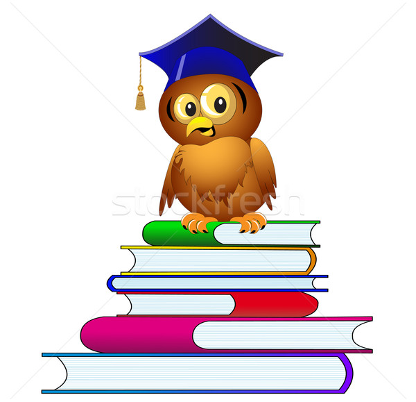 owl in hat sits on pile of the books Stock photo © yurkina