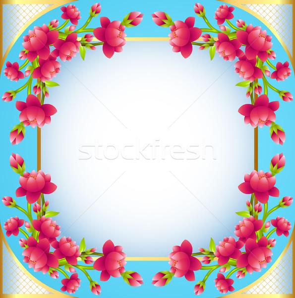 квадратный кадр цветения Вишневое иллюстрация Сток-фото © yurkina
