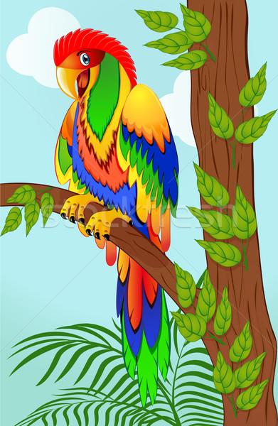 カラフル オウム 実例 青 羽毛 ストックフォト © yurkina