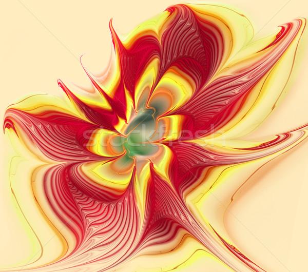 Illustratie heldere fractal bloem witte mode Stockfoto © yurkina