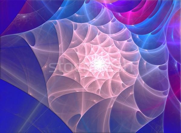 иллюстрация фрактальный оболочки морем красоту синий Сток-фото © yurkina