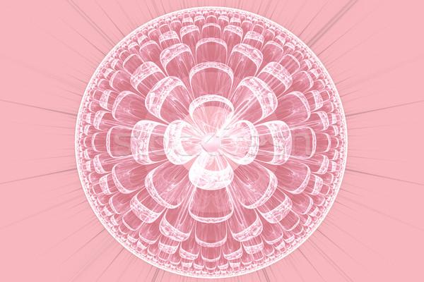 Illustrazione frattale rosa pizzo fiore abstract Foto d'archivio © yurkina