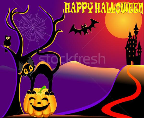 Halloween kat huis pompoen oehoe illustratie Stockfoto © yurkina
