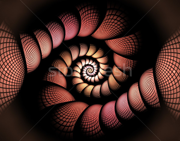 fractal illustration of a spiral in the box Stock photo © yurkina