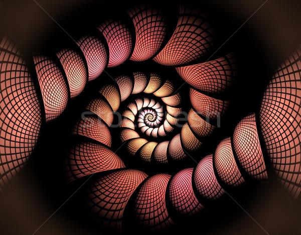 フラクタル 実例 スパイラル ボックス コンピュータ 光 ストックフォト © yurkina
