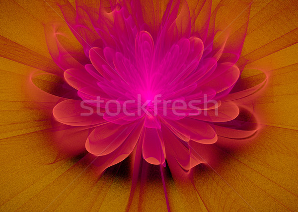 Illustration fractal fantastique lumineuses fleur rose fleur Photo stock © yurkina