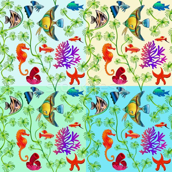 Conjunto marinha vida colorido Foto stock © yurkina