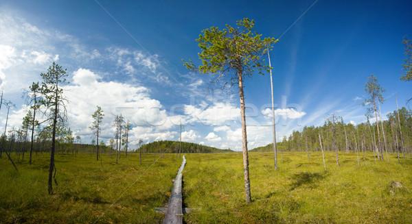 Wandelen parcours panoramisch hemel gras Stockfoto © yurok