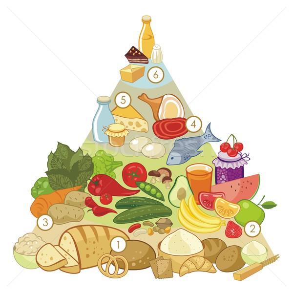 Omnivore Food Pyramid Stock photo © yurumi