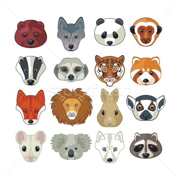 Animal Heads Set Stock photo © yurumi
