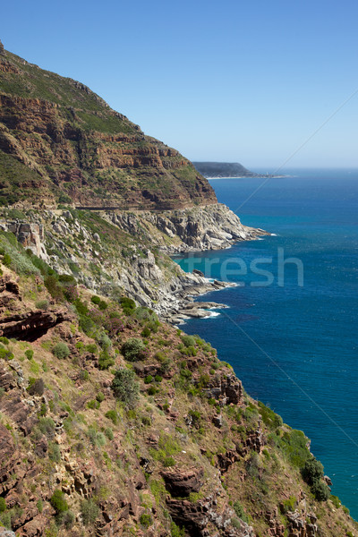 Chapman's Peak Stock photo © zambezi