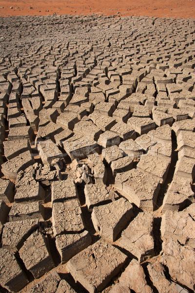 Cracked Mud Abstract Stock photo © zambezi