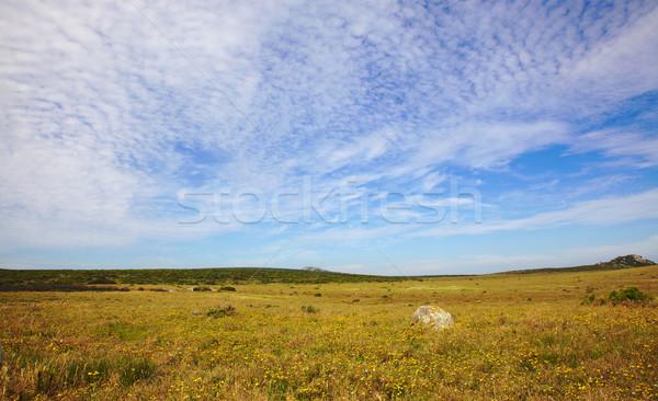 West Coast National Park Stock photo © zambezi