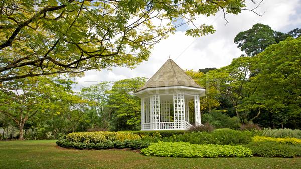 Singapour jardins musique lieu ici Photo stock © zambezi