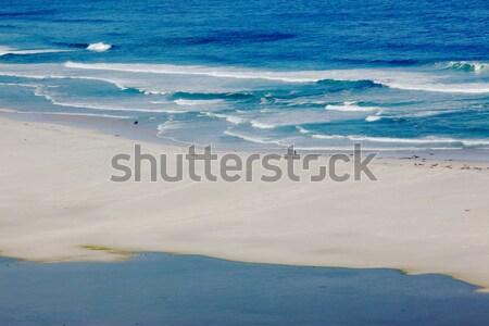Long beach at sörfçü yarımada Güney Afrika Stok fotoğraf © zambezi