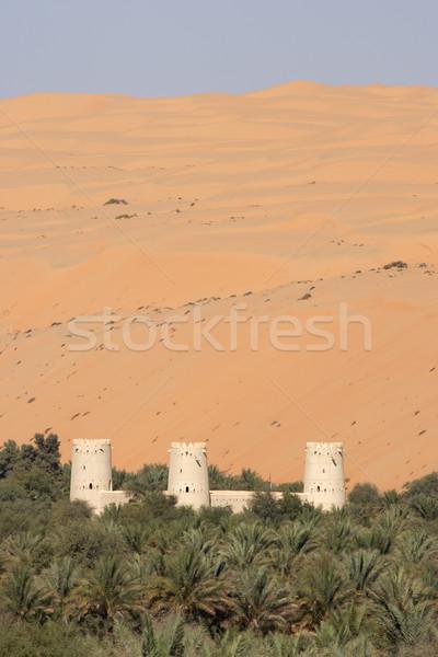 Arabian Fort Stock photo © zambezi