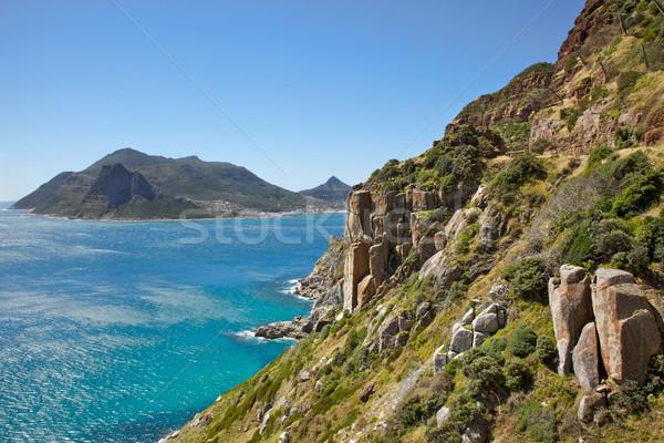 Sentinela conduzir península África do Sul Foto stock © zambezi