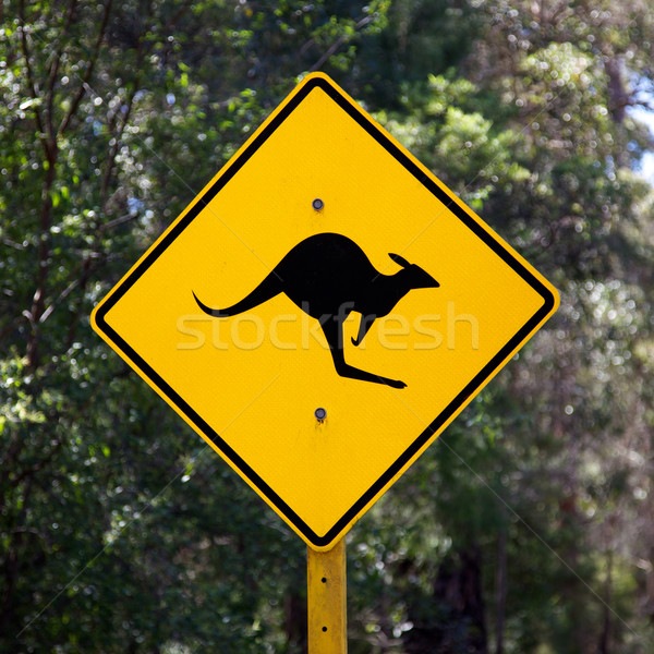 Kangoeroe teken kant van de weg landelijk Australië Stockfoto © zambezi