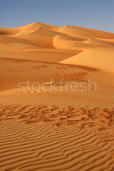 Empty Quarter Dunes Stock photo © zambezi