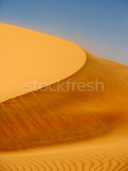 Wind on Dune Stock photo © zambezi