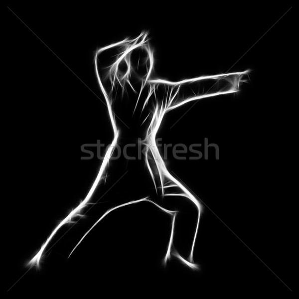 Fractal portrait of karate girl Stock photo © zastavkin